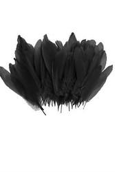 Parti - Balon Tüyü Siyah Renk