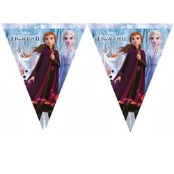 Parti Dünyası - Frozen 2 Bayrak Afiş 320 cm