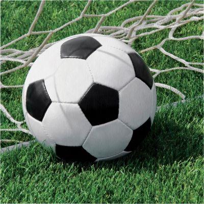 Futbol Topu 16 lı Peçete