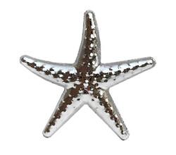 Parti Dünyası - Gümüş Deniz Yıldızı 25 Li Masa Konfetisi