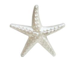 Parti - İnci Beyazı Deniz Yıldızı 25 Li Masa Konfetisi