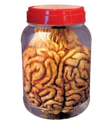 Korkunç Beyinler Laboratuar Kavanozunda