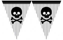 Parti Dünyası - Korsan Partisi Bayrak Afişi