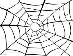 Parti Dünyası - Siyah Örümcek ağı 2,5 M