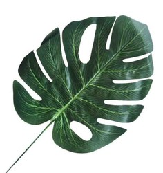 Parti Dünyası - Yaprak Devetabanı 23 cm