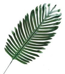 Parti Dünyası - Palmiye yaprak 44 Cm