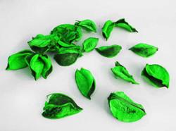 Parti Dünyası - Yeşil Dekor Yaprak 100 gr